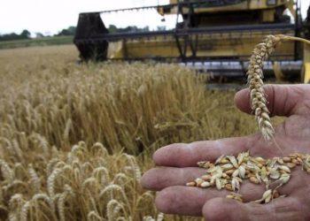 Επισιτιστική κρίση-Σήμα κινδύνου